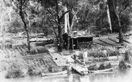 Schmeisshoh.  Vegetable garden established by the German Internees, Berrima NSW